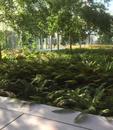 jardin entreprise